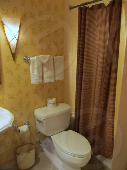 Hotel bathroom with toilet and brown shower curtain photo