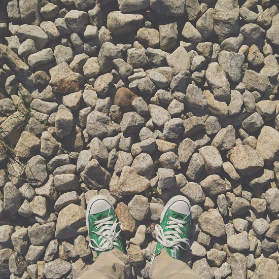 person wearing green low top converse all star sneakers photo