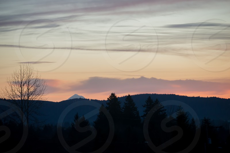 silhouette of pine trees overlooking mountain under blue sky during sunset photo