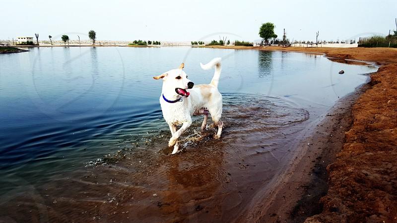lakes photo
