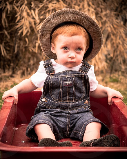 Baby in wagon photo