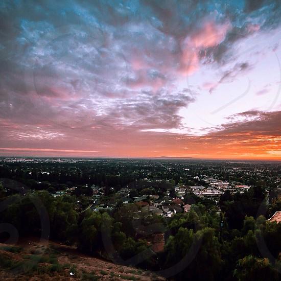 Cotton Skies photo