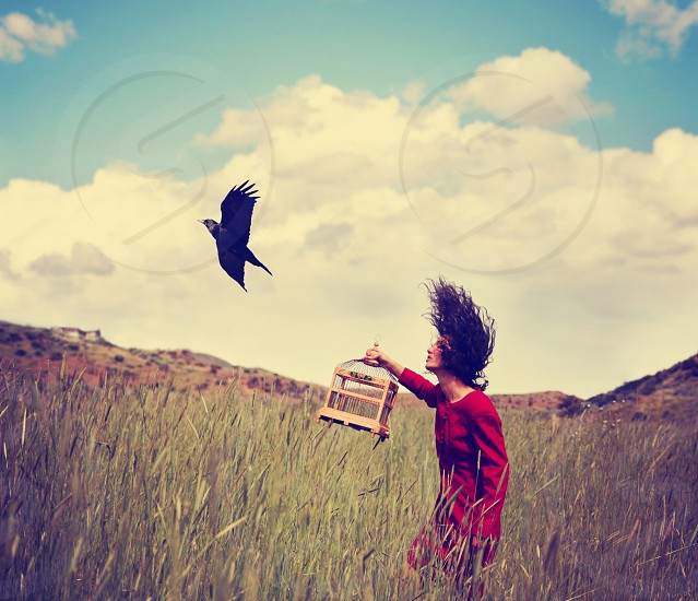 app background beautiful beauty bird birdcage black cage clouds concept crow day dream dress female filter flight fly freedom girl grass grunge hair human instagram landscape model mountains muted nature outdoors outside pretty raven red retro sexy sky summer sunny sunshine surreal vintage walking wheat white wild woman  photo