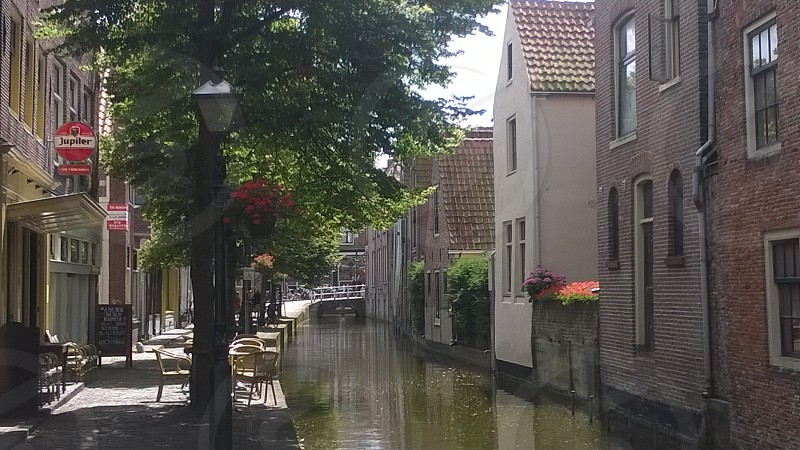 Netherlands Europe Alkmaar Bridge Houses Architecture Clouds Sky Travel Canal River Flowers Lamp Post Bar Cafe photo