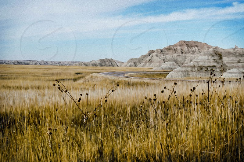 """""""Fields of Our Past""""...Bad Lands of South Dakota  photo"""