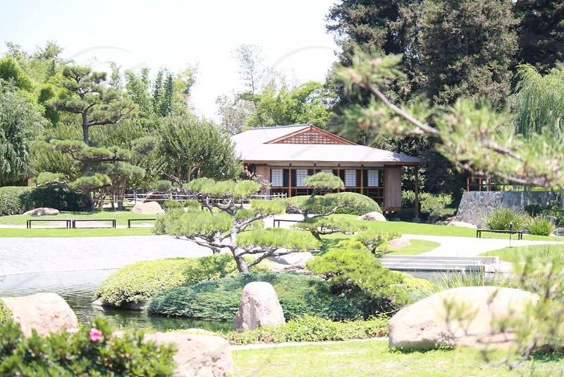 Japanese Gardens. photo