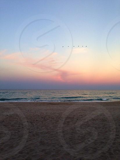 Sunrise. Palm Beach Florida. photo