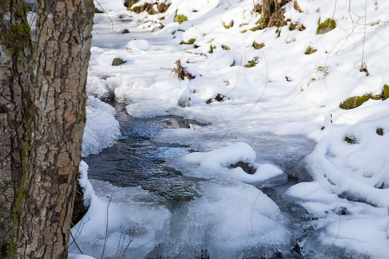 a small icy and snow-covered river in the forest of the Rhön in Germany  photo