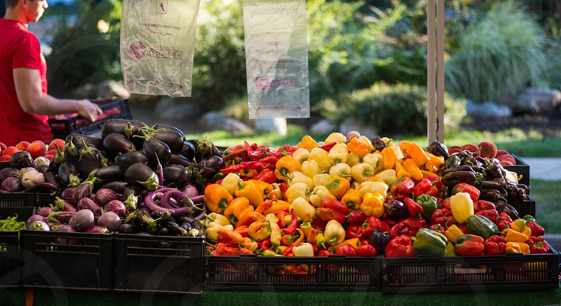 Farm to Table photo