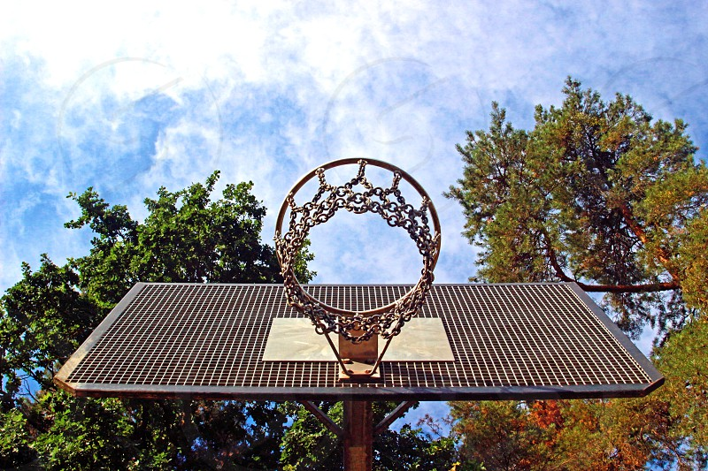 basketball basket  in a park with large trees seen from below blue and white sky photo
