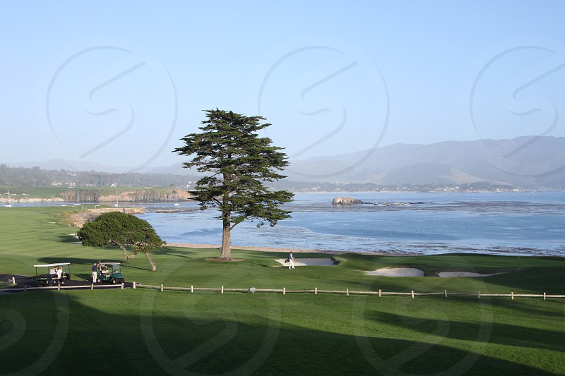 pebble beach golf course scenic ocean golfer lone cypress photo