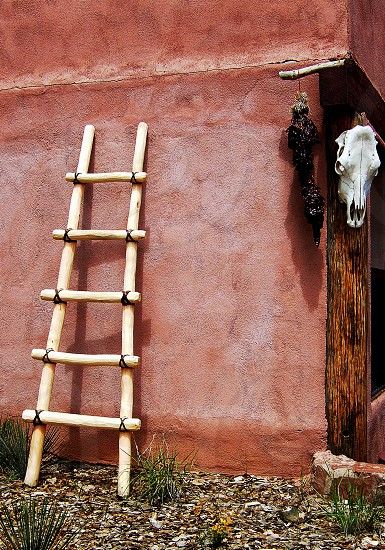 New Mexico motifs with cow skull and wooden ladder. photo