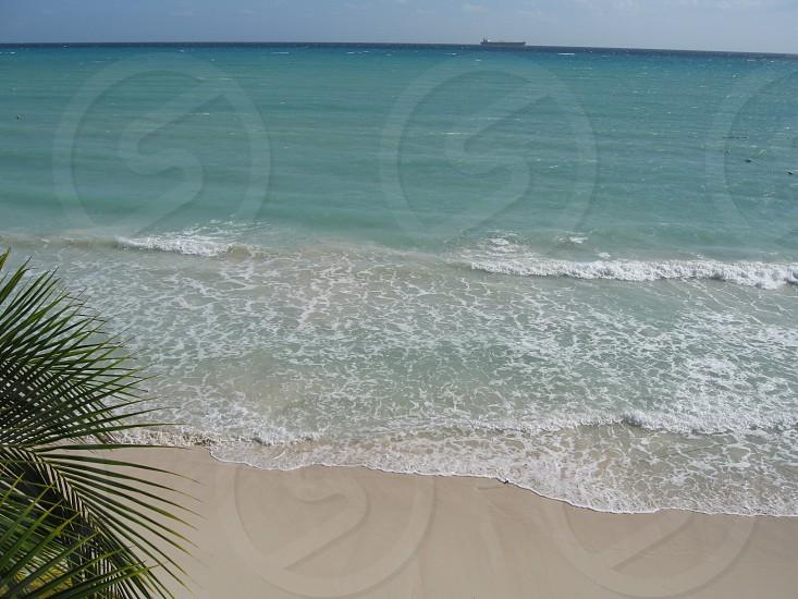 Bahamas006 photo