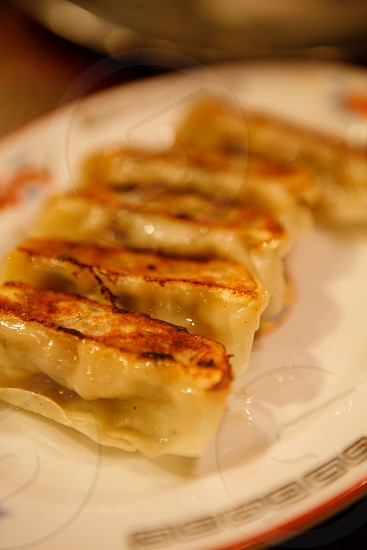 Japanese dumplings gyoza photo