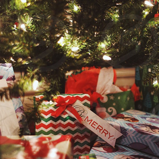green christmas tree and gift box photo