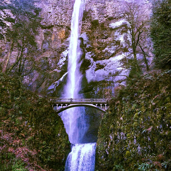 Multnomah Falls Columbia Gorge Oregon   photo