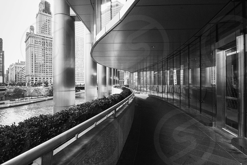 one perspective grayscale photography of glass panel building beside water body photo