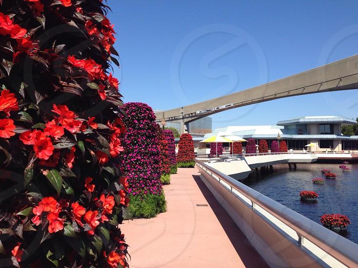 Epcot Center Orlando Florida. photo