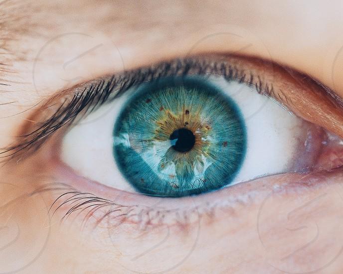 green eye photo