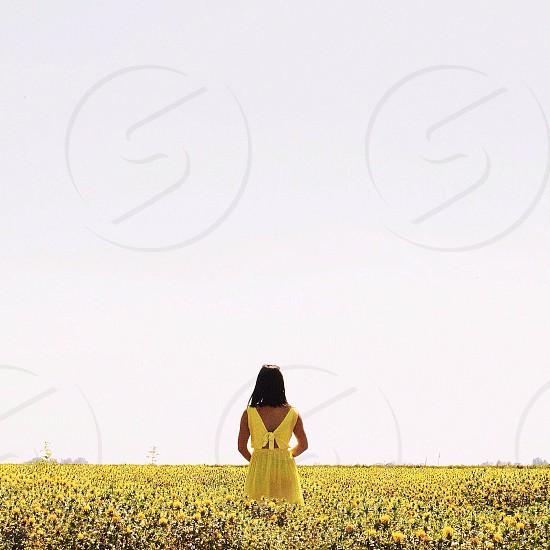 A girl walking into a flower field.  photo