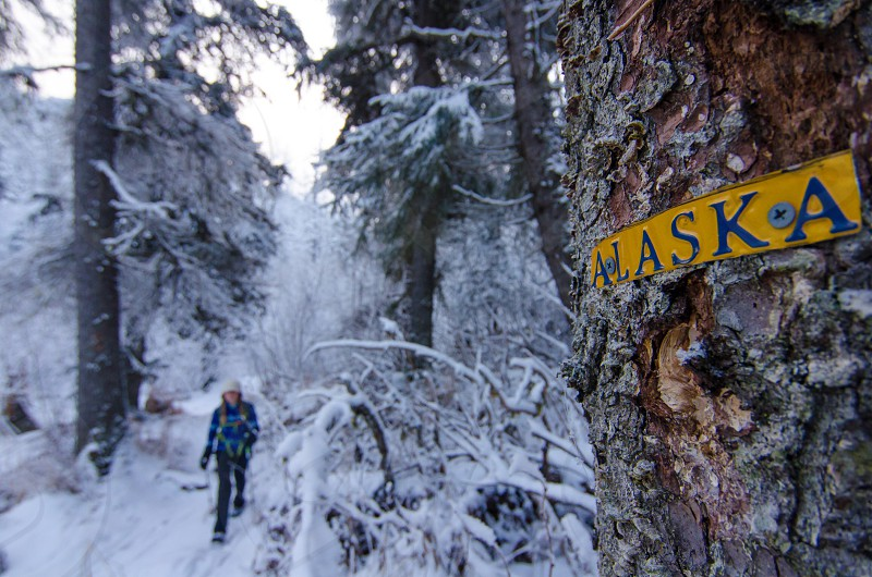 Alaska outdoors hike outside explore snow winter cold fun travel photo