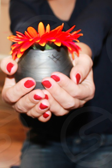 woman holding a vase of flowers in her hand photo