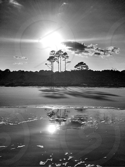 Hunting Island State Park Beaufort SC photo