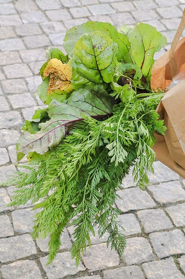 Shopping vegetables cooking vegetable paper bag  nature nature like  ecological  market farmer farmers market  farming plants plant tops top carrots carrot beets street cobbled street business  foodie hipster hipsters kitchen  cooking cook chef bag shopping bag background wallpaper photo