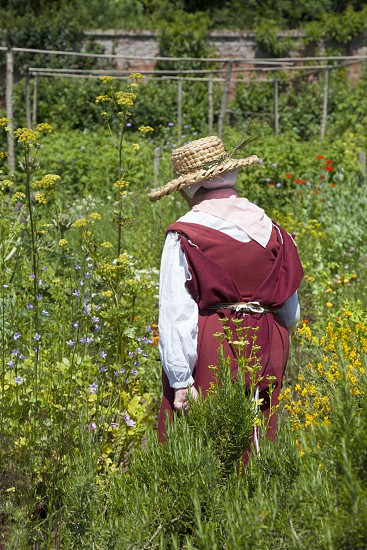 Lady in her garden in 16th century clothes photo