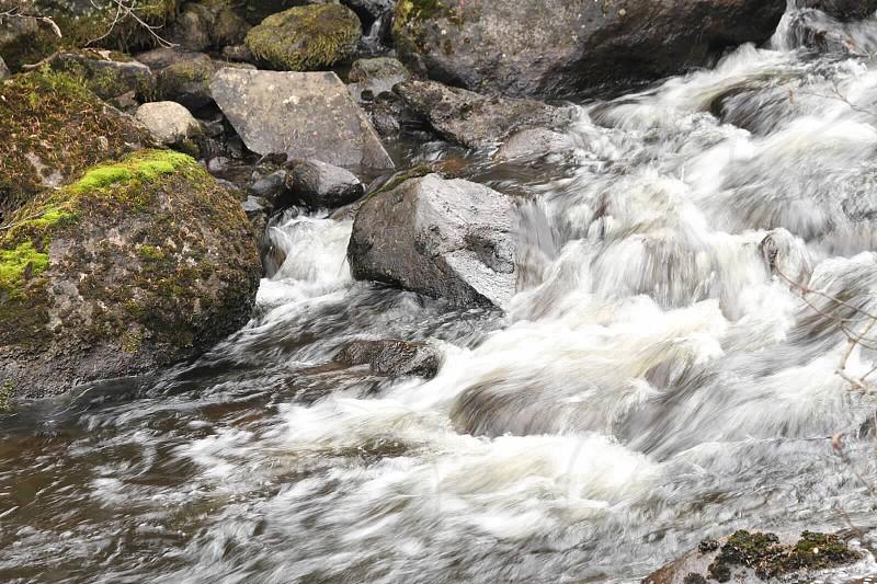 Moose River photo