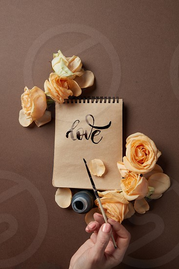 The girl writes a congratulation love on a brown background with roses photo
