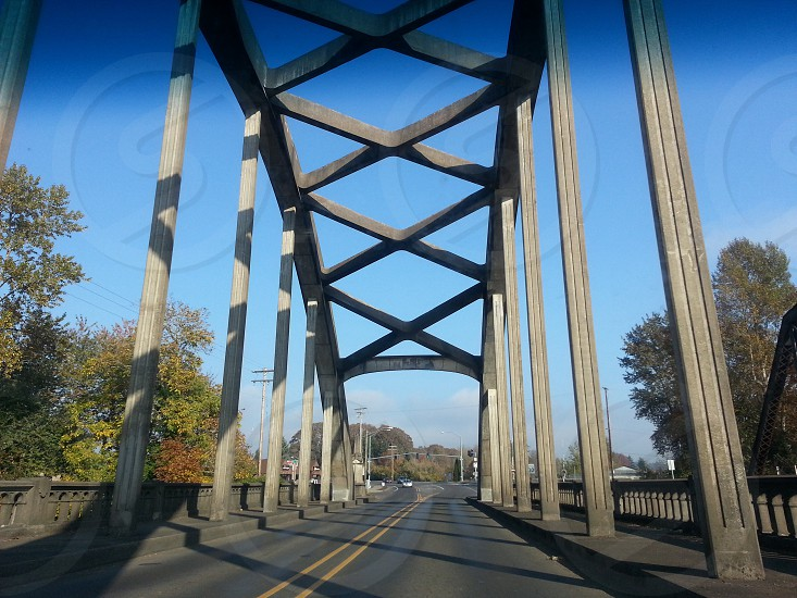 Bridge beauty! photo