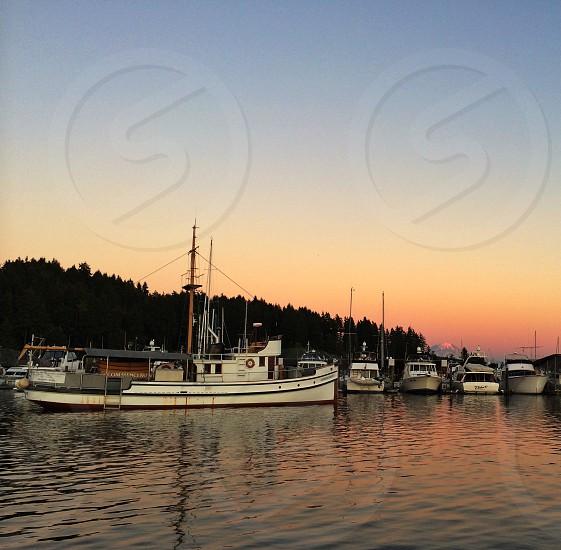 Landscape in Gig Harbor Washington  photo