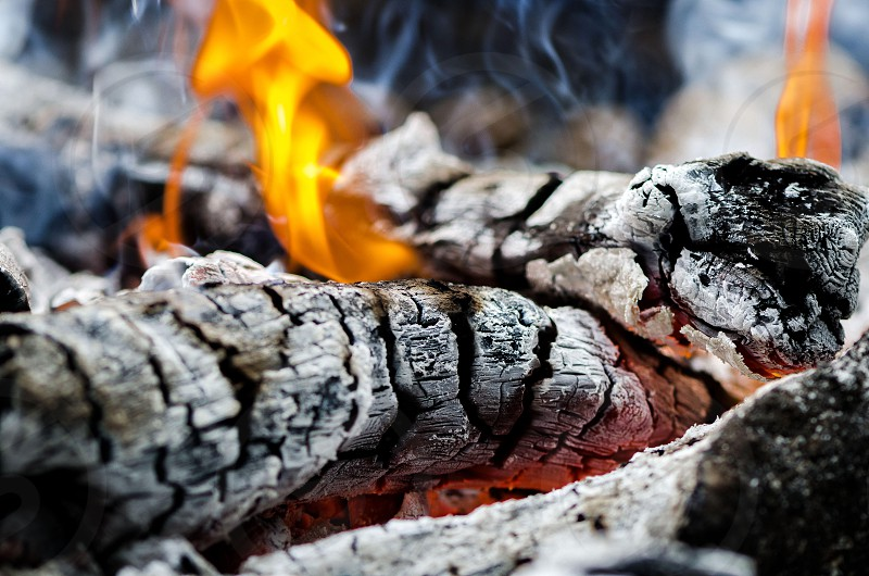 Extreme close up of an outdoor fire burning. photo