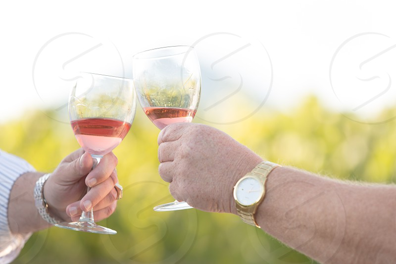 Two men clinking glasses of rose wine photo
