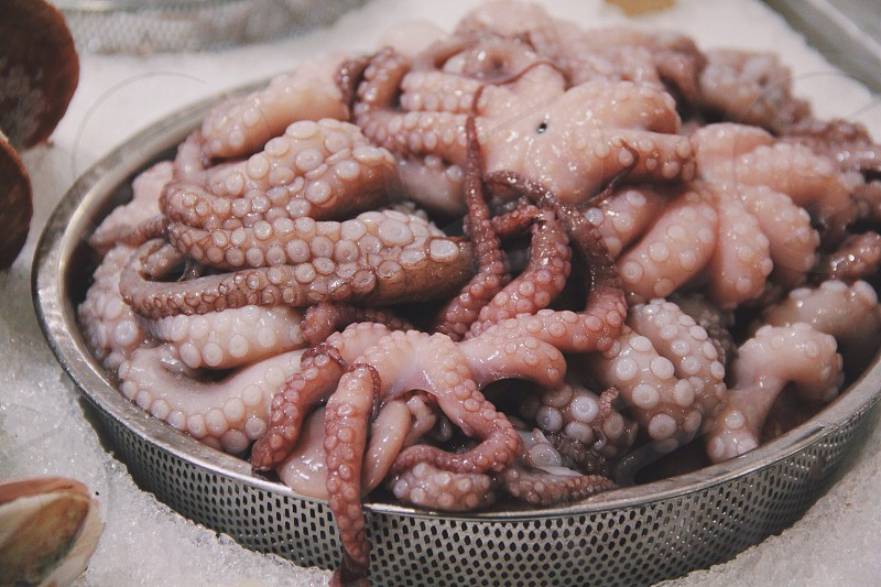 octupos tentacles on strainer photo