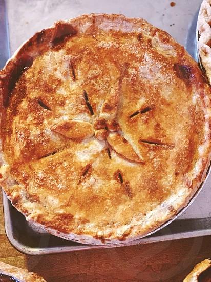 Pie food thanksgiving dessert photo
