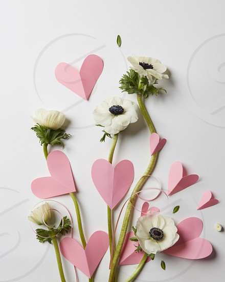card with flowers and pink hearts on Valentine's Day photo