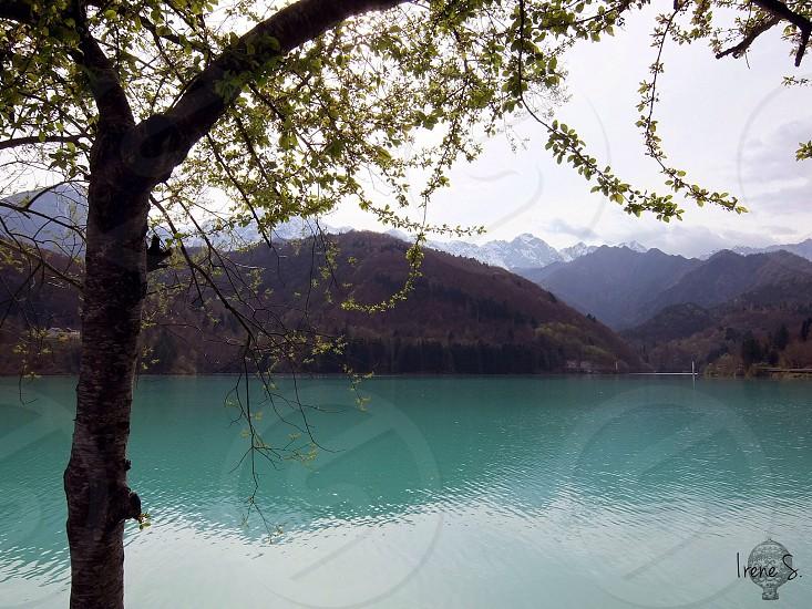 Barcis lake photo