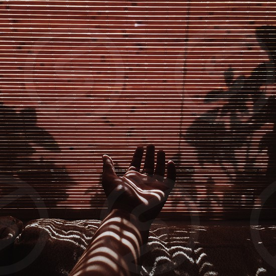 person's hand behind blinds photo