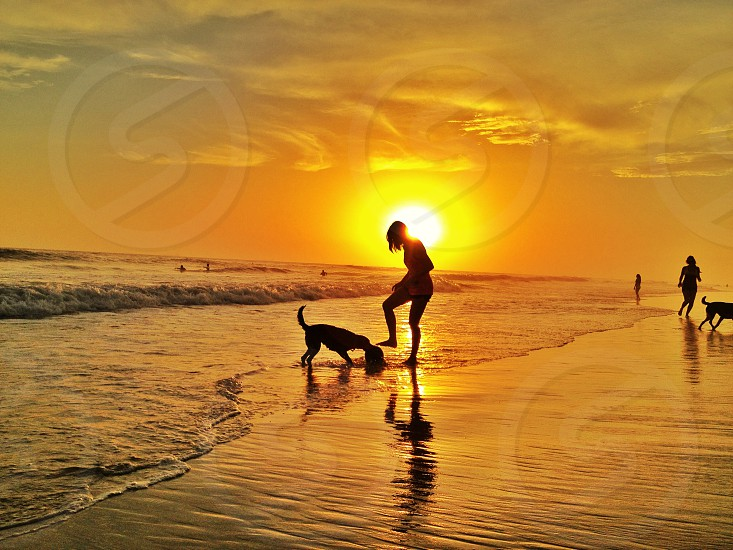 woman and dog on the beach photo