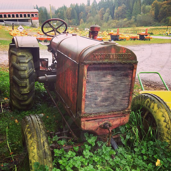 Tractor farm fall pumpkins old retro  photo