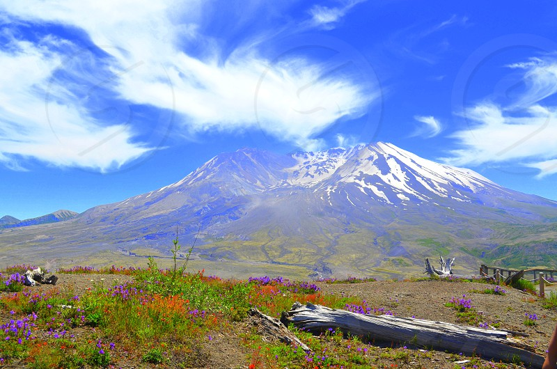 Mount St. Helens from the walking path photo