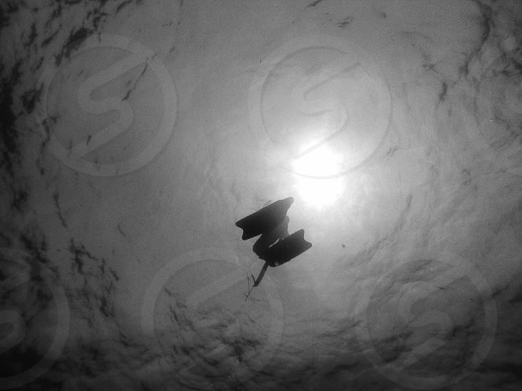 under water photo photo