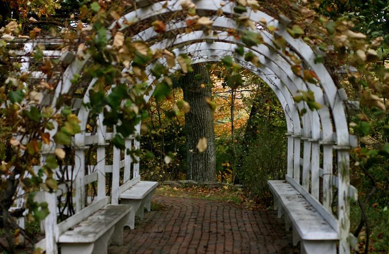Garden Arch photo