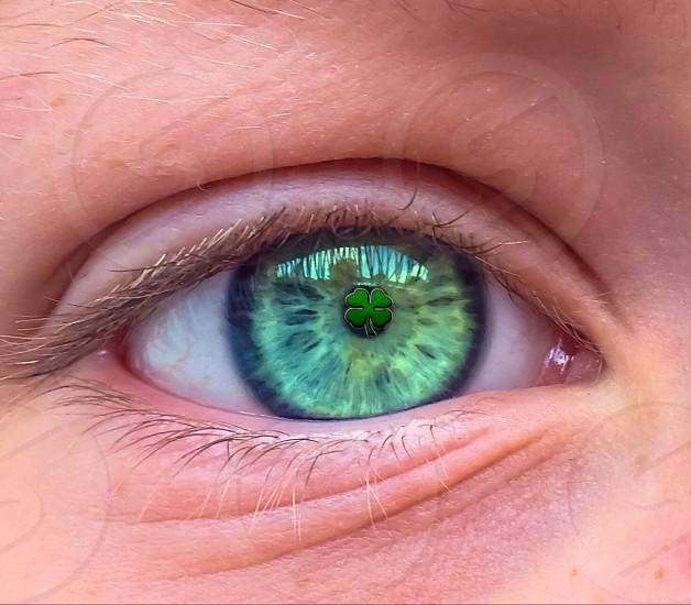 Saint Patricks day irish Ireland shamrock clover europe eye irish vision  photo