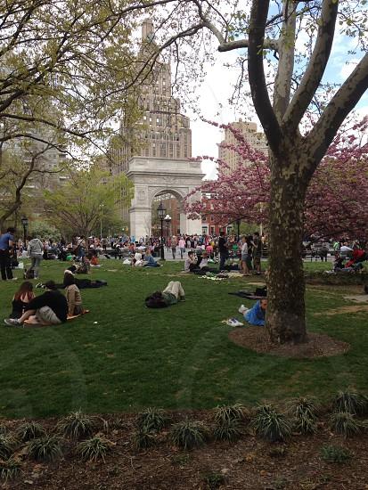 Washington Square Spring photo