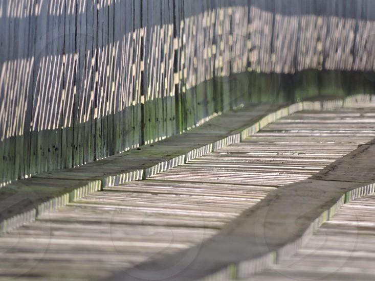 Fences photo