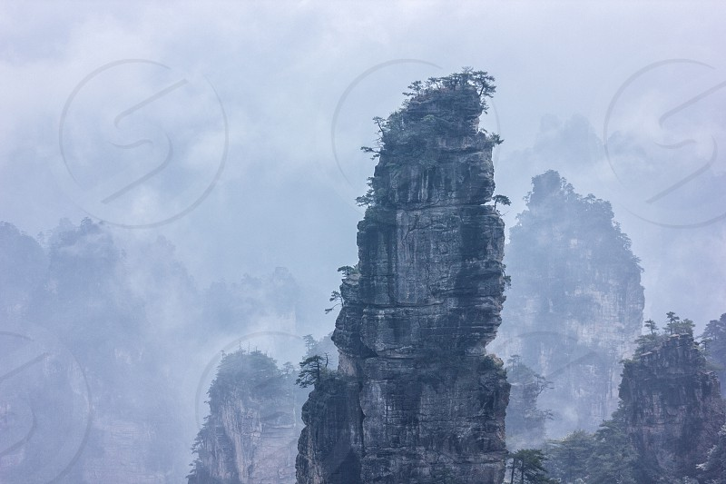 """The planet Pandora exists – and it is Zhangjiajie National Forest Park in China. This place has inspired James Cameron on shooting of """"Avatar"""". photo"""