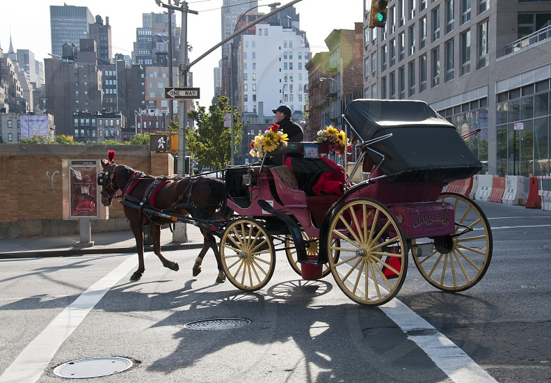 black red horse-drawn carriage with yellow floral bouquets photo
